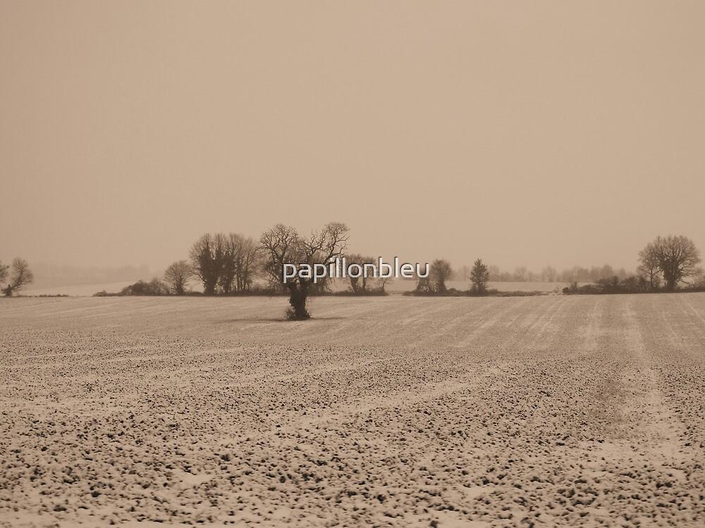 The Fields - Sepia by Pamela Jayne Smith