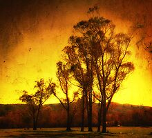 Distant Fire - Narbethong by Hans Kawitzki