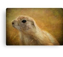 Found Alan, but lost Steve! Canvas Print
