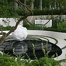 Chelsea Flower Show 09 - Cancer Research Garden by BronReid
