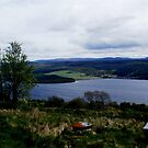 view down to Loch Ness by BronReid