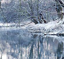 Winters Water by CJTill