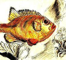 fish by Birgits