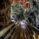 Smoo Cave by Roddy Atkinson