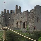 Dudley Castle by amylw1