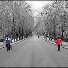 two sides, Retiro Park Madrid by OlurProd