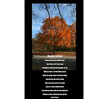 Mystery of Fall and Love Photographic Print
