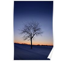 A New Year Dawns Poster