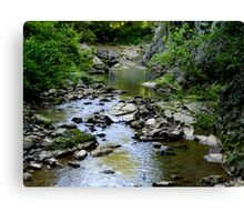 Country Brook Canvas Print