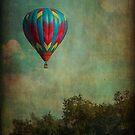 Balloon hill by Karol Franks