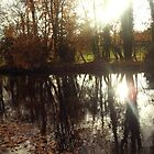 Autumn Reflection by amylw1