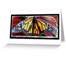 The most exotic Butterfly Greeting Card