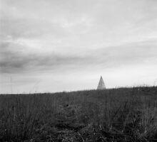 landscape with a pyramid  by wiazemsky