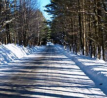 A Winter Country Road #2 by marchello