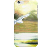 Seascape 30 12 2014 iPhone Case/Skin