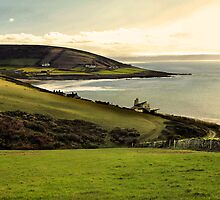 Baggy Point, Croyde, Devon by Squealia