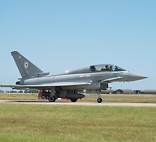 """Typhoon T1 """"BF"""" 29 Squadron RAF  by Dave Holmes"""