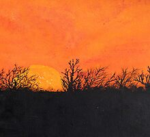 Lincolnshire Sunset by sally59
