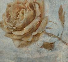 The Rose * Wall Art by AnaCBStudio