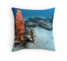 Bristol Beaufighter wreck Throw Pillow
