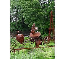 More sculptures in the park Photographic Print