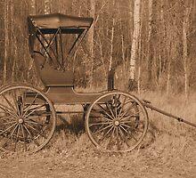 """A Classy Ride"" - Classic Passenger Buggy by Leslie van de Ligt"
