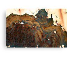 molten mania Canvas Print