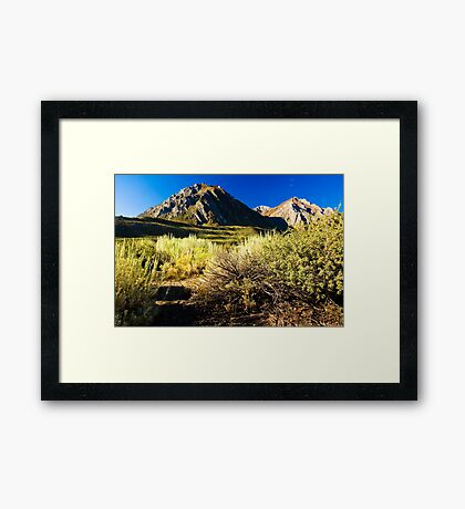 Morning at Mount McGee Framed Print