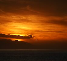 La Gomera: Sunset Flight by Kasia-D