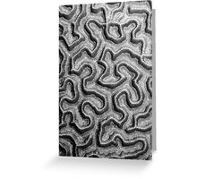 Brain Coral Pattern Greeting Card
