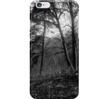 traditional russian landscape iPhone Case/Skin