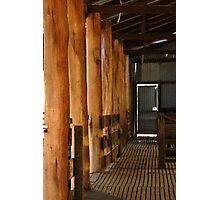 Shearing Shed - Frankland, Western Australia Photographic Print