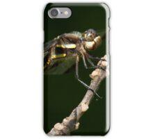 Bazinga iPhone Case/Skin