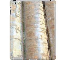 Silo City iPad Case/Skin