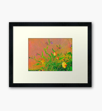 Yellow Papavers................................Most Products Framed Print