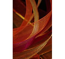 Ribbon works Photographic Print
