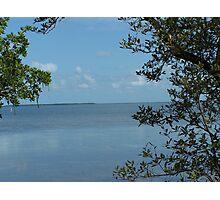 Tavernier  Water View Photographic Print