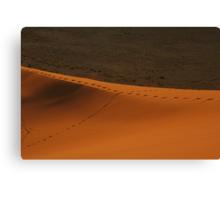 Trails on a ridge of sand Canvas Print