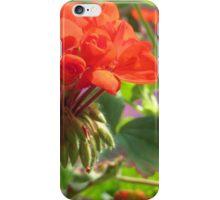 Red-Orange Geranium iPhone Case/Skin