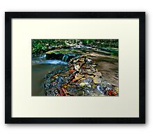 Up Stream Framed Print