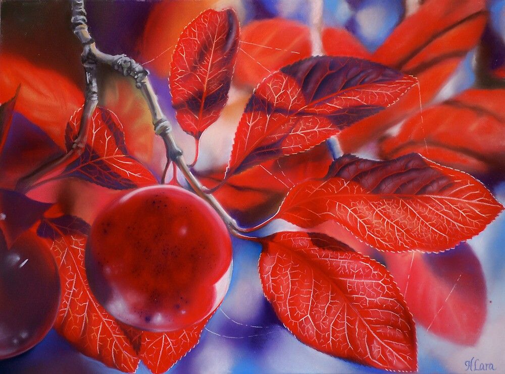 Ornamental Plum 2 by Heather Lara