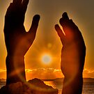 Reaching for the Sun by njordphoto