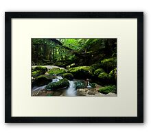 Shallow Water 2 Framed Print