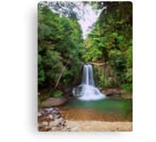 Waiau Falls, Coromandel Canvas Print