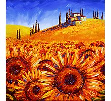 Tuscany Sunflower Hills Photographic Print