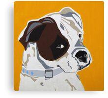Rocco - Boxer Canvas Print
