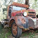 Old Truck - Hippo Beach winery - Dubbo  by Blackie