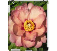 Exotic Beauty - Unusual Peony Basking in the Sunshine iPad Case/Skin