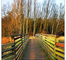 Footbridge, Hartham, Hertford - Hertfordshire (Colour Version) by MoGeoPhoto
