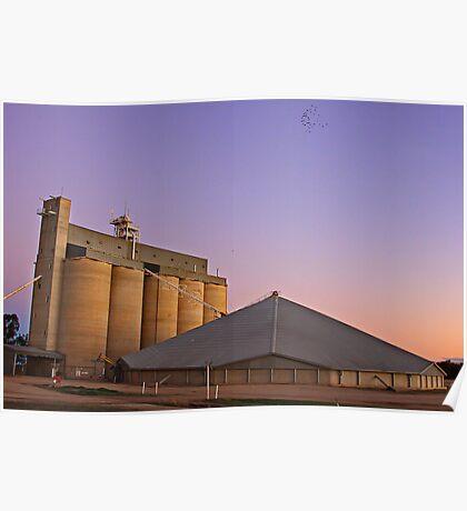 Wheat Silos-Goondiwindi, Australia Poster